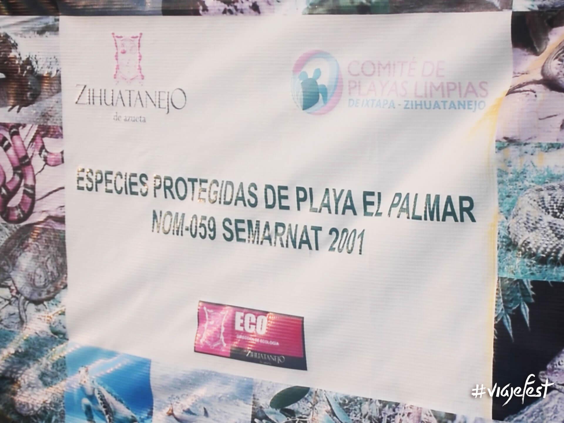 Comité de Playas Limpias de Ixtapa-Zihuatanejo encargado de la liberación de tortugas.