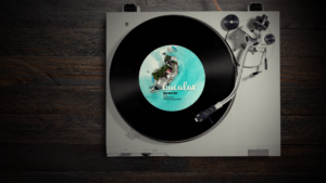 Musica-Bacalar-300x169.png