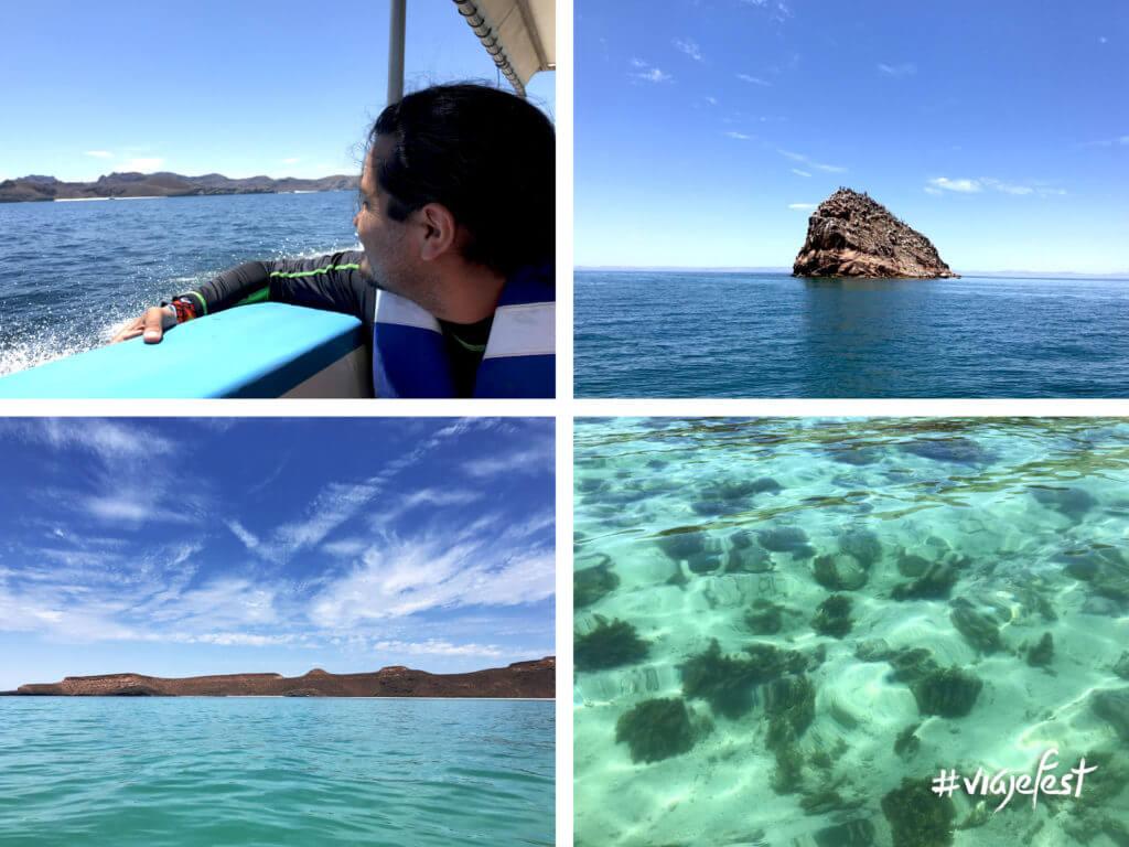 Paseo a la Isla Espíritu Santo, Baja California Sur