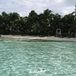 Playa M