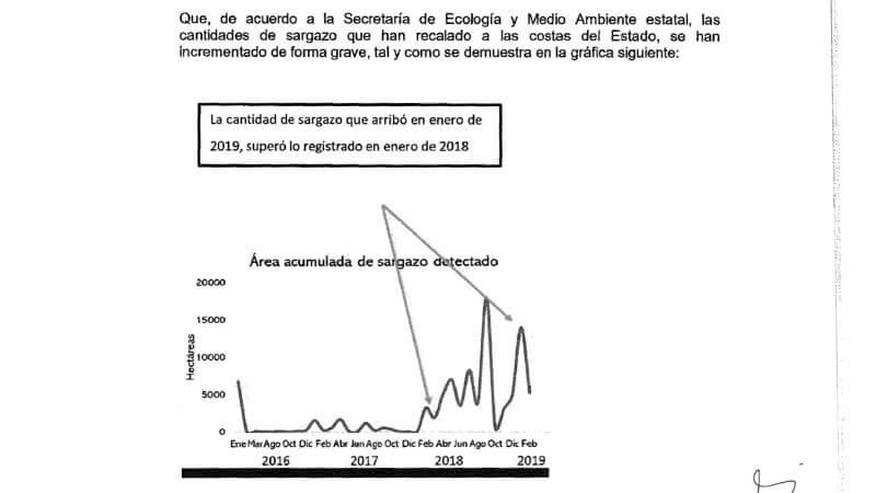 """""""La cantidad de sargazo que arribó en enero de 2019, superó lo registrado en enero de 2018"""""""