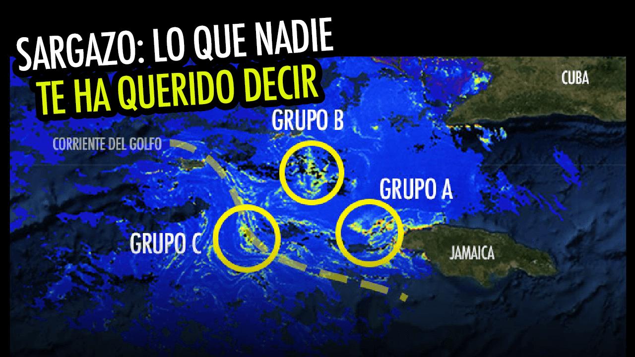 Mitos y realidades del sargazo en México