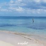 Puerto Juá
