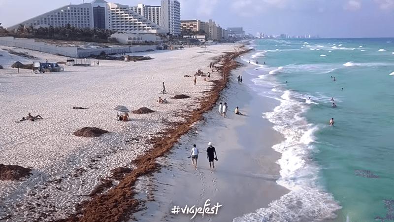 Playa Delfines, una de las mejores playas en Cancún con sargazo